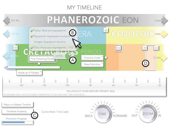 Timeline interface